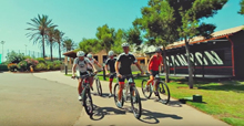Canyon Base Mallorca